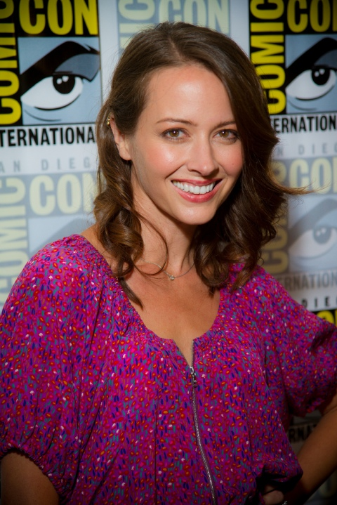 Amy Ackerman of Person of Interest, Dollhouse, and Angel
