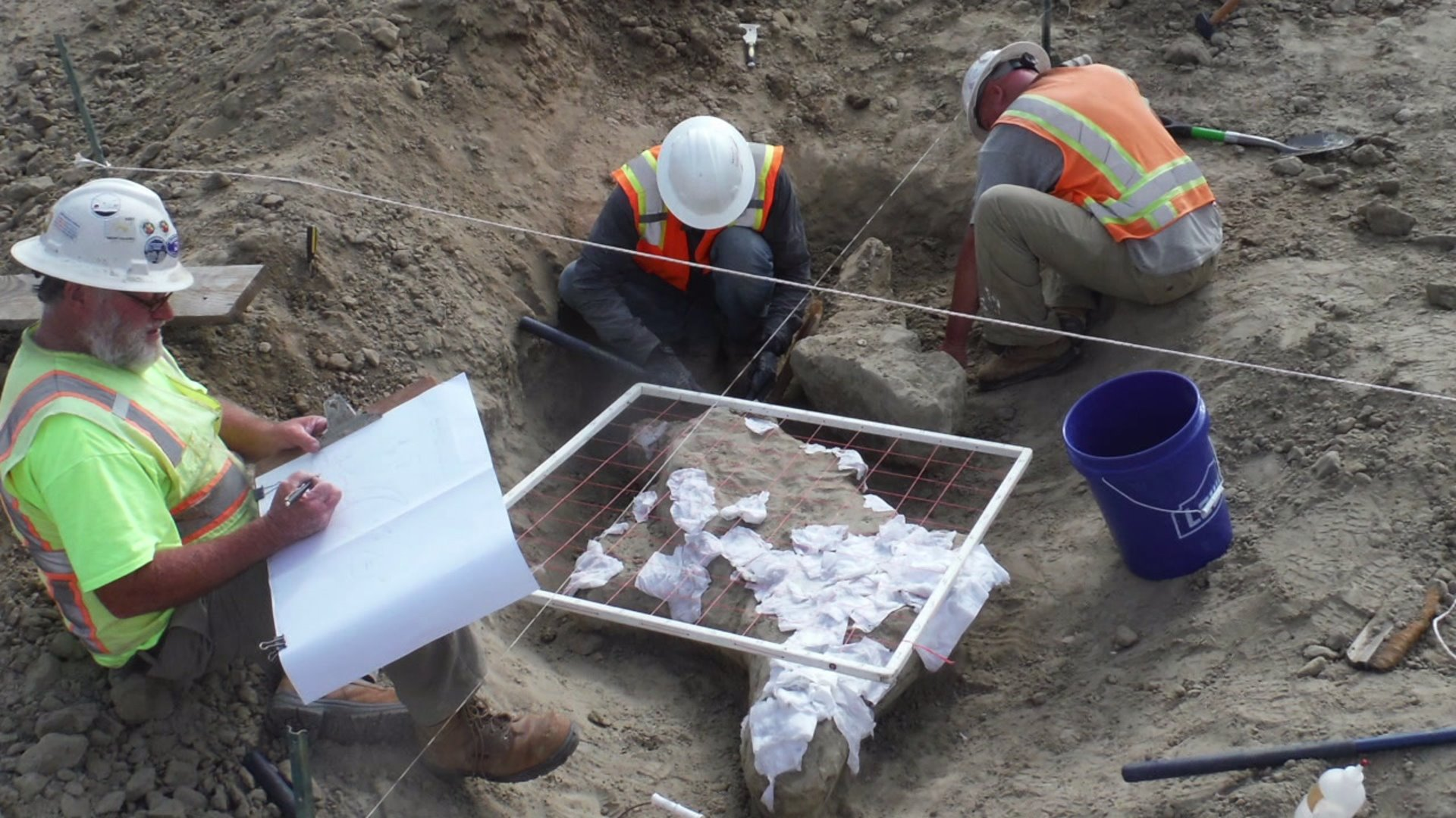 Ice Age fossils found at Carlsbad construction site   FOX ...
