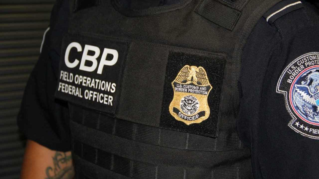 Border officer pleads guilty to using excessive force during inspection