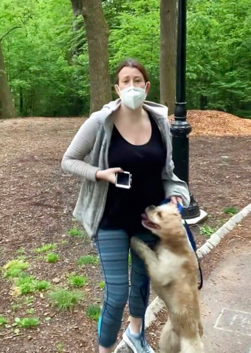 FILE - This file image made from May 25, 2020 video provided by Christian Cooper, shows Amy Cooper with her dog talking to Christian Cooper in Central Park in New York. Amy Cooper, walking her dog who called the police during a videotaped dispute with Christian Cooper, a Black man, was charged Monday, July 6, 2020, with filing a false report. (Christian Cooper via AP, File)