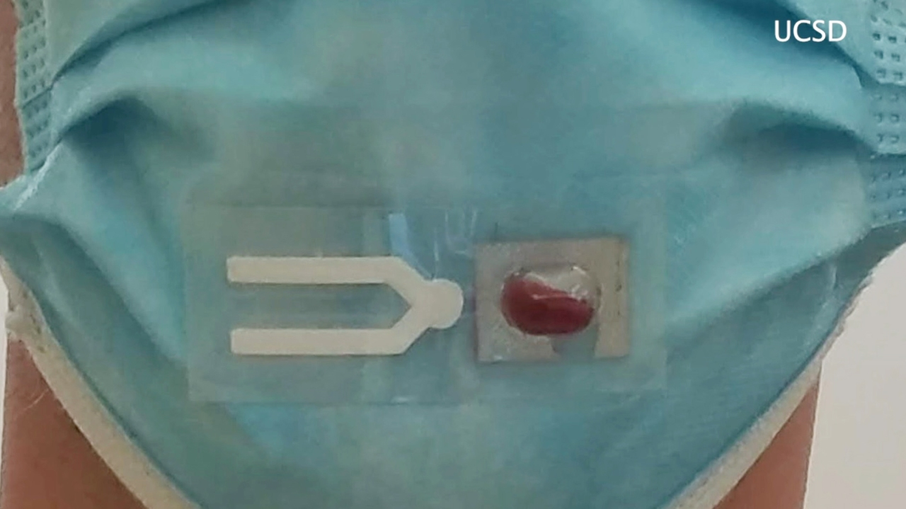 UCSD researchers developing wearable COVID-19 test strip